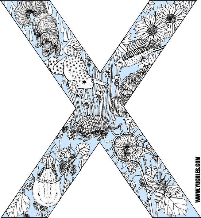 letter x coloring page by yuckles!