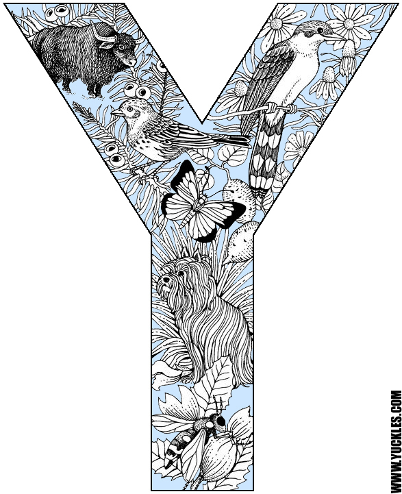 this is a coloring page for the letter y that