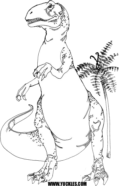 The Gallery For Gt Allosaurus Coloring Pages Allosaurus Coloring Page