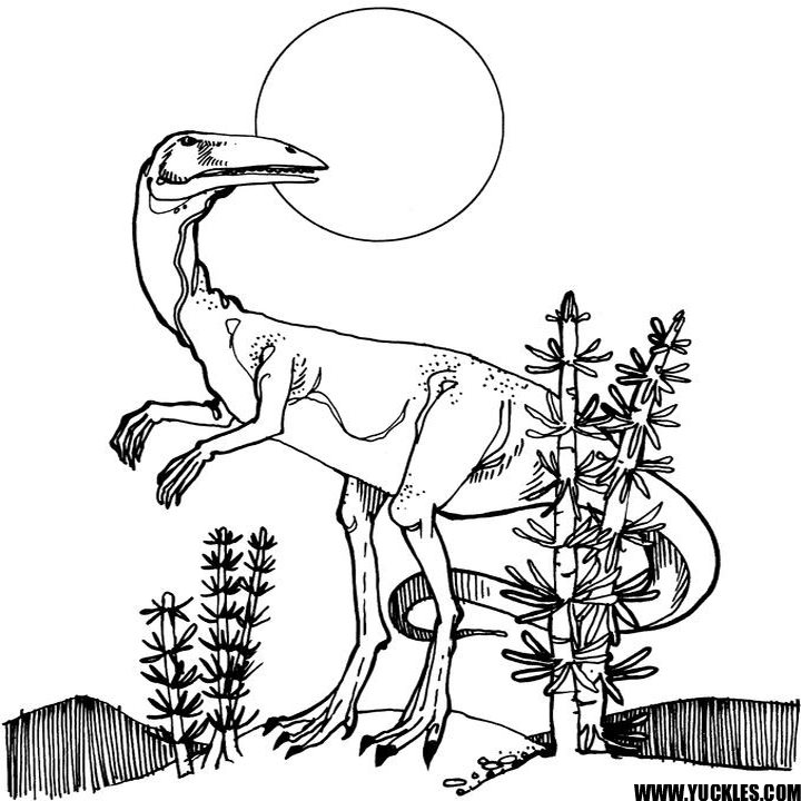 coelophysis coloring page