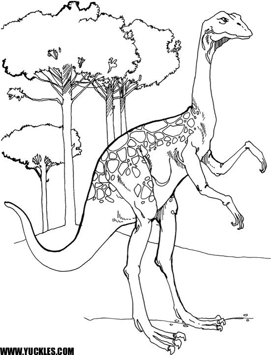 ORNITHOMIMUS COLORING PAGE