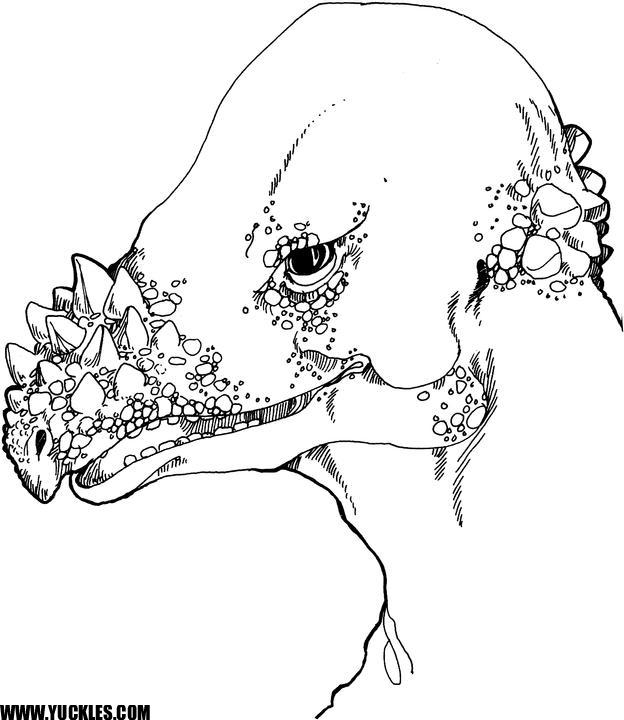 pachycephalosaurus coloring page