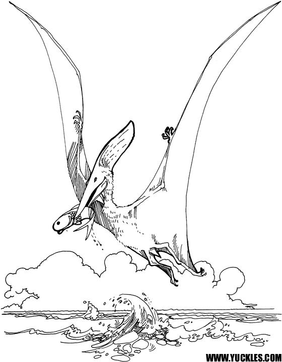 pteranodon coloring page by yuckles
