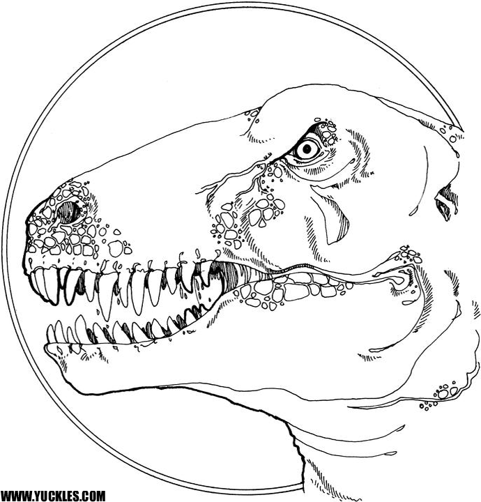 - Tyrannosaurus Coloring Page By YUCKLES!