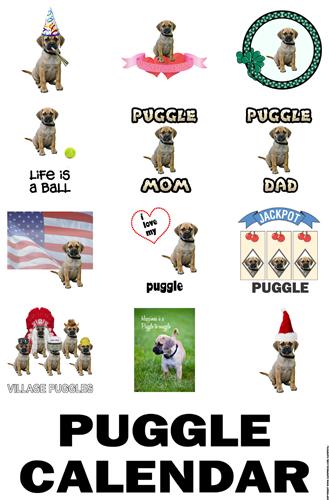 2014 Puggle Calendar