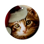 Tabby Cat Ornaments