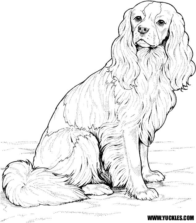 realistic puppy coloring pages - ckcs coloring page by yuckles