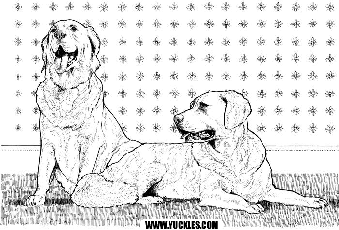 Golden Retriever Coloring Page by YUCKLES!