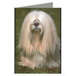 Lhasa Apso Greeting Cards