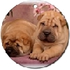 Shar Pei Ornaments