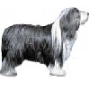 Bearded Collie T-Shirts