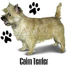 Cairn Terrier T-Shirts