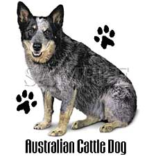 Australian Cattle Dog T-Shirts