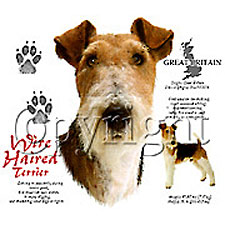 Fox Terrier T-Shirts