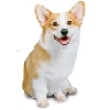 Welsh Corgi Greeting Cards